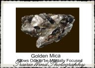 Golden Mica