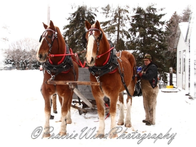 PWP Sleigh Ride0009