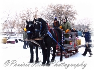 PWP Sleigh Ride0017