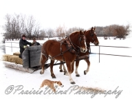 PWP Sleigh Ride0018
