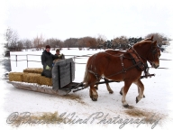 PWP Sleigh Ride0019