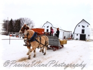 PWP Sleigh Ride0021