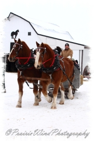 PWP Sleigh Ride0023