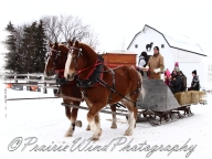 PWP Sleigh Ride0024