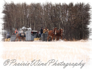 PWP Sleigh Ride0041