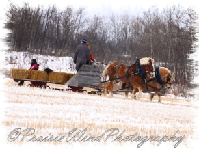 PWP Sleigh Ride0046