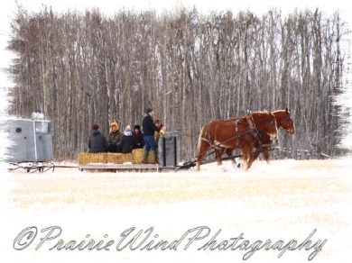 PWP Sleigh Ride0047