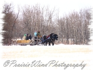 PWP Sleigh Ride0048