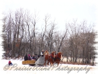 PWP Sleigh Ride0049