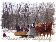 PWP Sleigh Ride0050