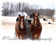 PWP Sleigh Ride0051