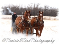PWP Sleigh Ride0052