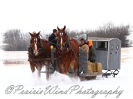 PWP Sleigh Ride0055