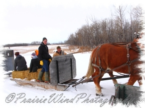 PWP Sleigh Ride0058