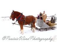 PWP Sleigh Ride0064