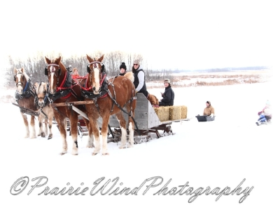 PWP Sleigh Ride0069
