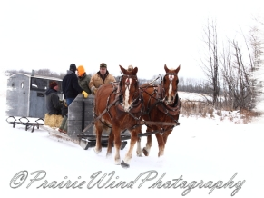 PWP Sleigh Ride0070