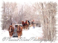 PWP Sleigh Ride0074