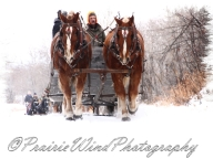 PWP Sleigh Ride0079