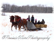 PWP Sleigh Ride0087